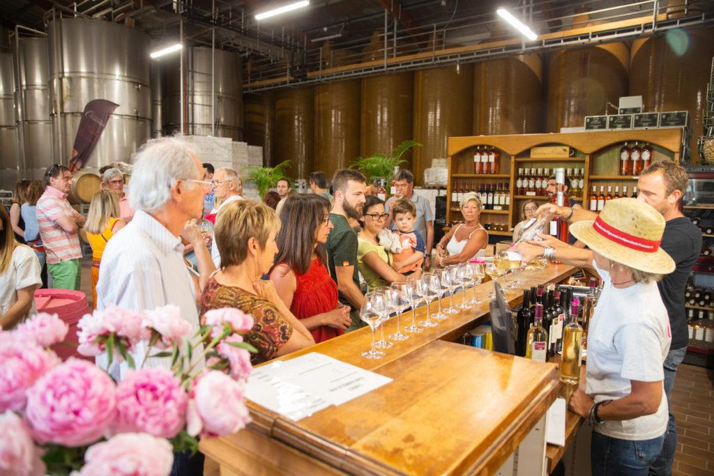 Pique nique chez le vigneron à Lambesc aix en provence coteaux d'aix en provence bouches du rhone vin